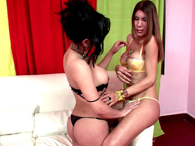 Inviting T-girls In Wonderful Underwear And Prime High-heeled Shoes Melanie And Vanessa Fumbling Their Figures With Zeal