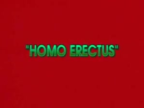 Gay Erectus Proper Flick..