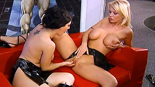 2 Gals And A Faux-cock